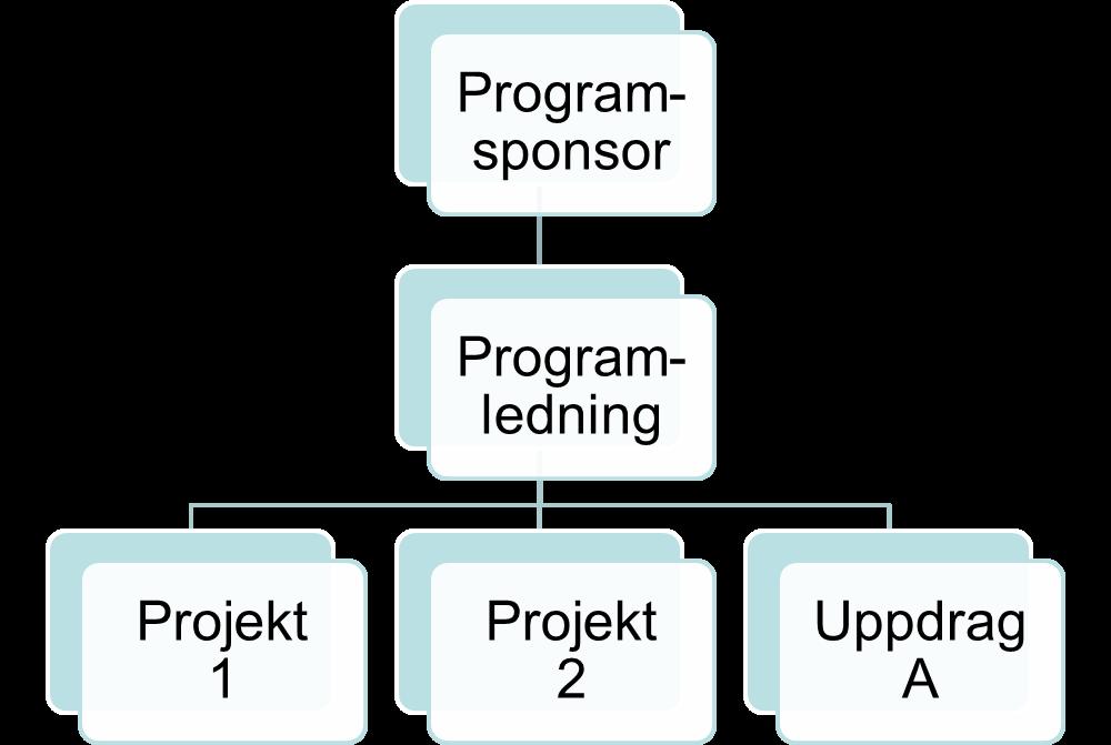 Figur 2: Exempel på programorganisation med två projekt och ett uppdrag som utförs i linjen.