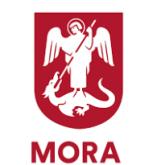 Processkartläggning Mora Kommun